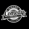 affiche PASS COMPETITION - DINARD COMEDY FESTIVAL 2017